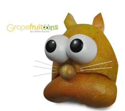 grapefruit cat