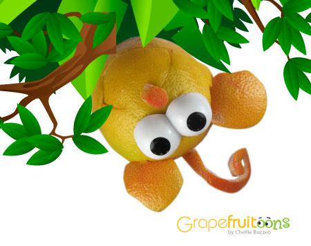 Grapefruit jungle monkey