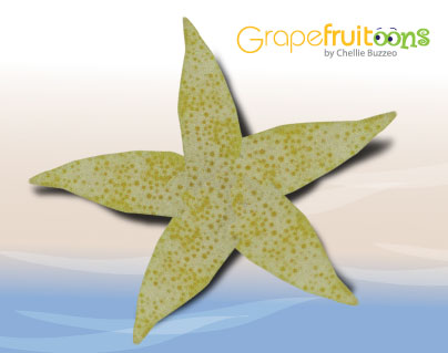 grapefruit starfish