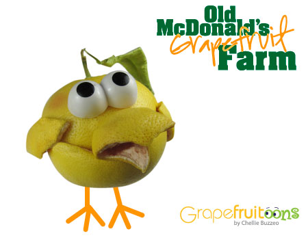 Old McDonald had  a chick