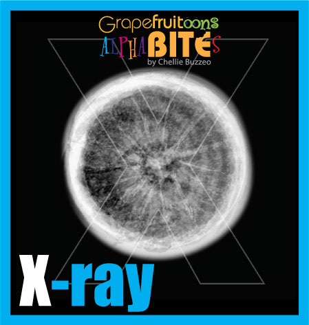 Letter X stands for X-ray. AlphaBITES are created from grapefruit. Part of a year-long challenge on Grapefruitoons by Chellie Buzzeo.