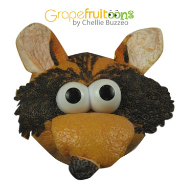 Rocky Racoon make from grapefruit