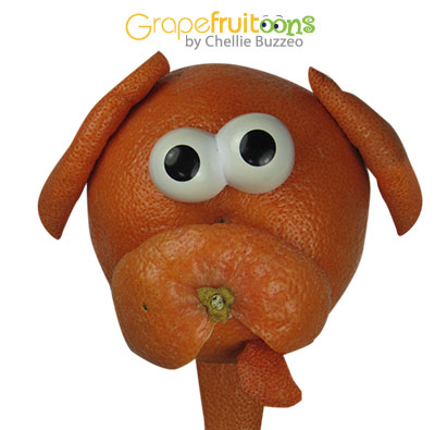 dog made from grapefruit