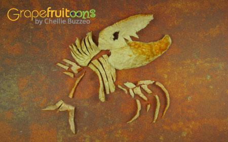 dino fossil grapefruit